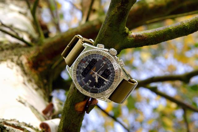 B-1 in a tree (breitling_b-1_tree_fall.jpg)