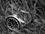GMT grass B&W (gmt_herbes_nb.jpg)