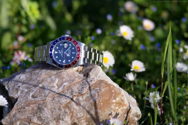 GMT-Master on a rock (gmt_rock_flowers2.jpg)
