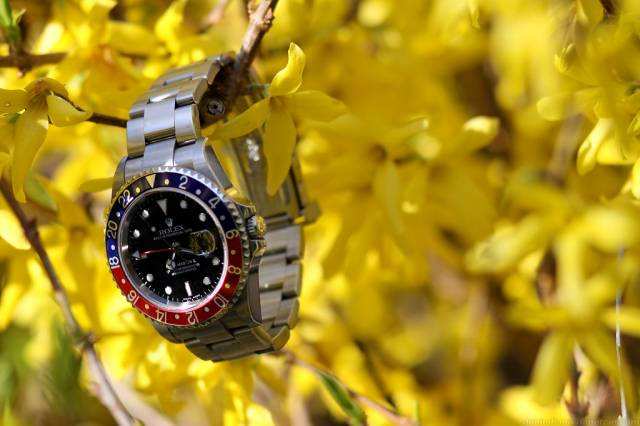 GMT Master with yellow flowers (gmt_yellow_flowers.jpg)