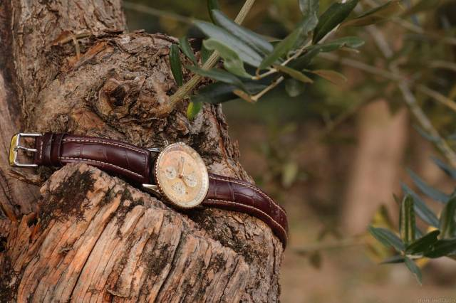 Navitimer and olive tree (nav-tt_brown-strap_olive-tree.jpg)